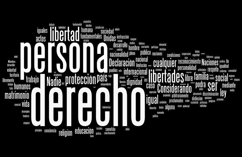 Derechos humanos y su defensa internacional por Omar Hernández