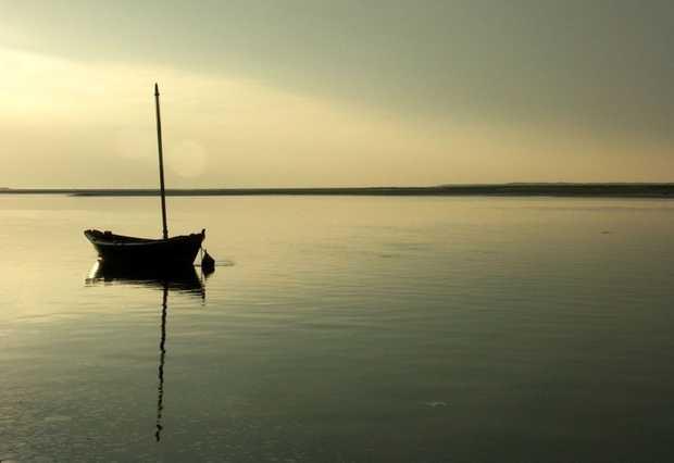 Somos soledad por Gonzalo Himiob Santomé