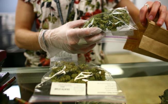 Senado colombiano aprueba en debate uso de marihuana con fines medicinales