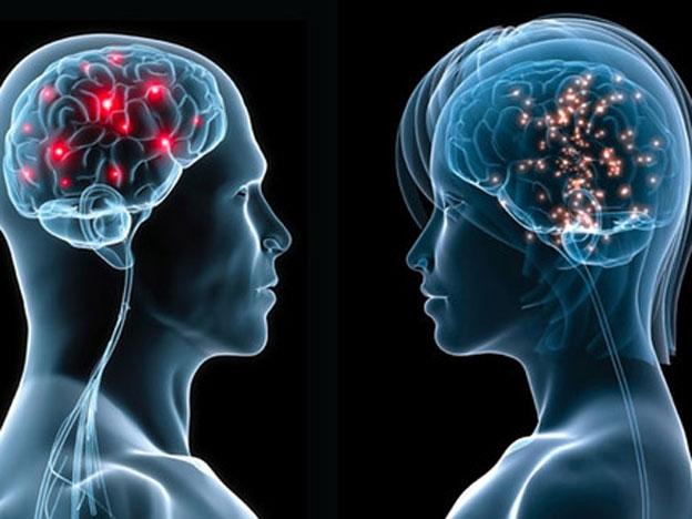 Crean un interruptor que permite controlar genes con la mente