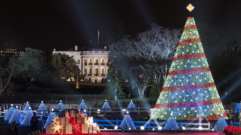 Incre bles rboles de navidad alrededor del mundo fotos - La casa de la navidad ...