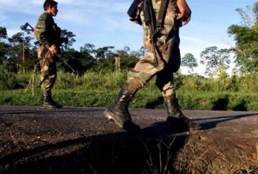FARC declara cese unilateral al fuego por tiempo indefinido