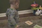 Este bebé con 16 meses puede leer (Video)