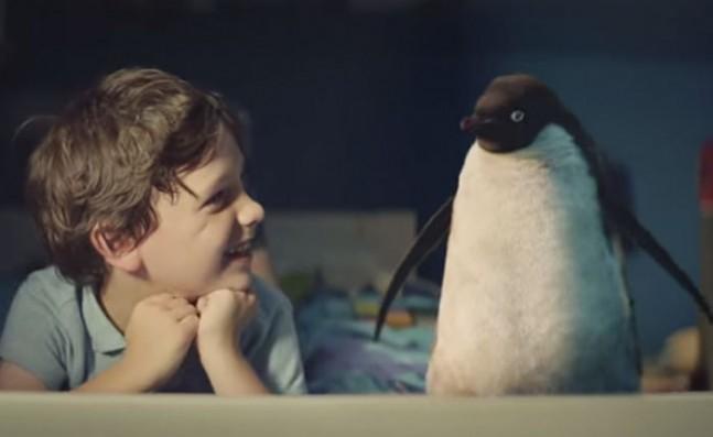 pinguino-647x397.jpg