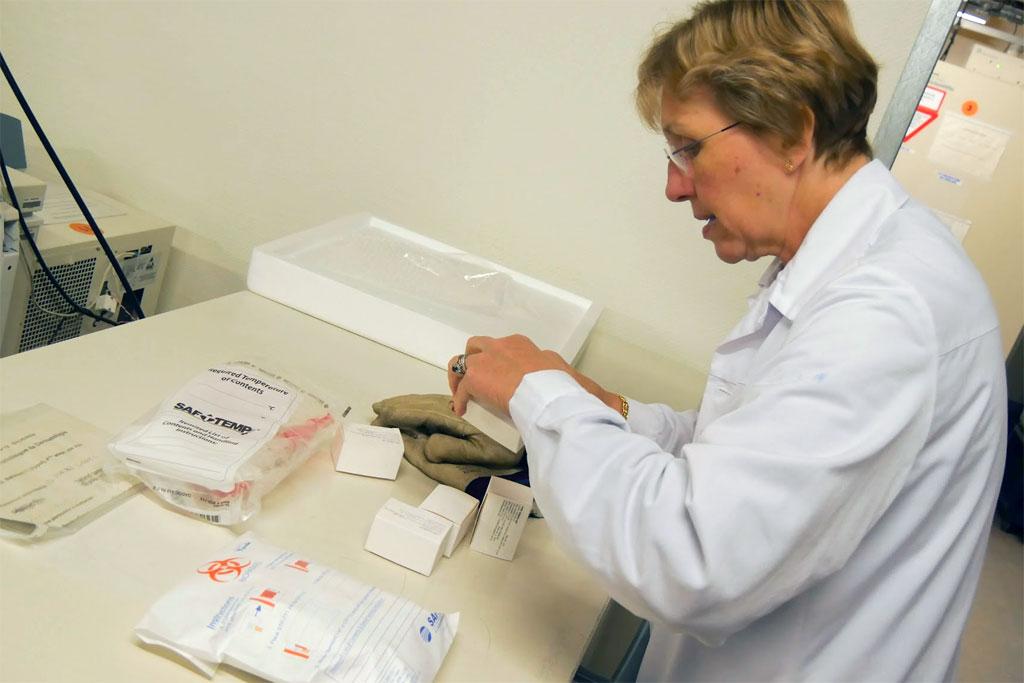 OMS: Las pruebas de vacunas contra el ébola empezarán a fines de enero