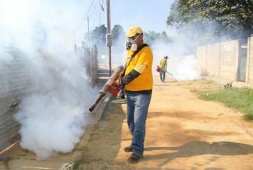 Venezuela cerró en 2014 con 34.642 casos de chikungunya