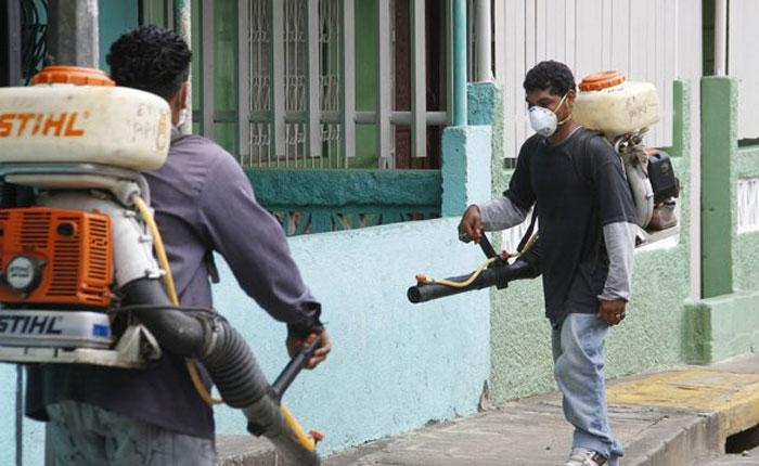 Propagación internacional de chikungunya, dengue y chagas preocupa a la OMS