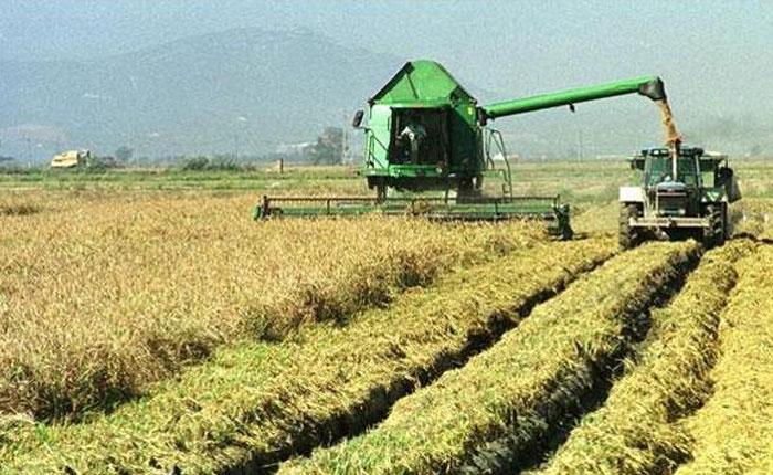 Retroceso agroindustrial y alimentario, retroceso en derechos laborales, más pobreza: ¿Revolución? ¡Involución! por Damián Prat