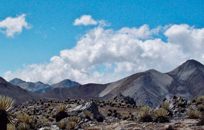 parque_nacional_sierra_la_culata_2.jpg