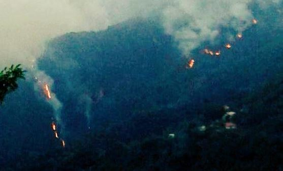 Persistencia de incendio en Galipán obliga a los vecinos a desalojar