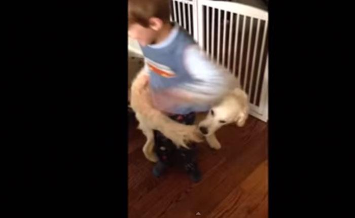 Este perro se convirtió en un aro de hula hula