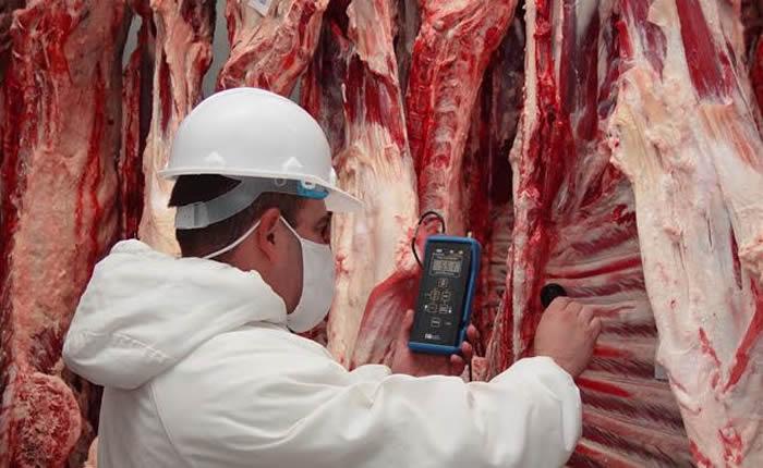 UE, China, Hong Kong y Chile suspenden importación de carne brasileña