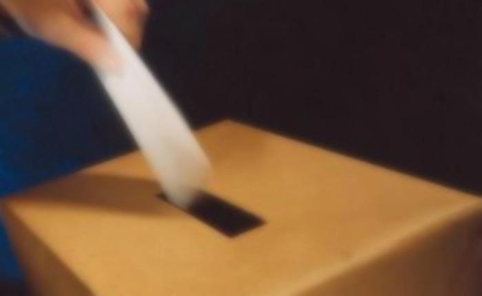 Breve historia del voto por Laureano Márquez