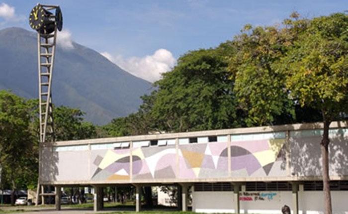 ONG piden a Alto Comisionado de la ONU, atender derechos universitarios en Venezuela