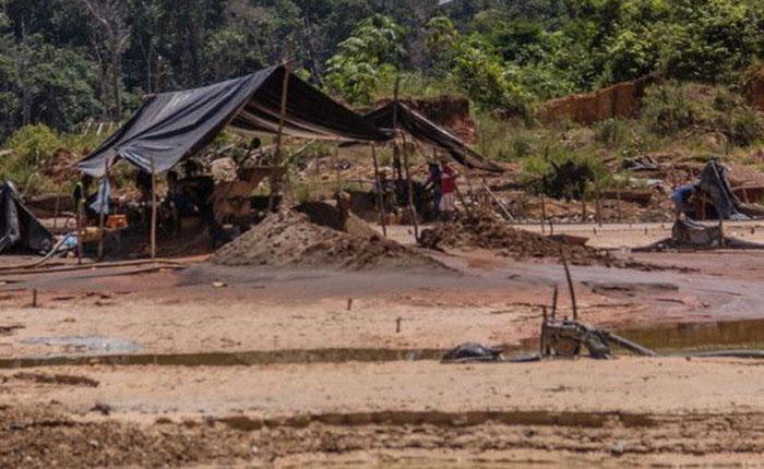 Minería del oro tras 17 años: solo fracasos, infierno y cero ganancias para la nación por Damián Prat