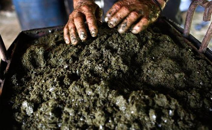 ESPECIAL: Así es la ruta de la producción de coca en Colombia (FOTOS)