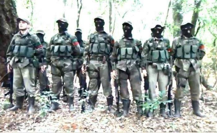 Informe Otálvora: Guerrilla con nexos chavistas dispara alarmas al sur del Continente