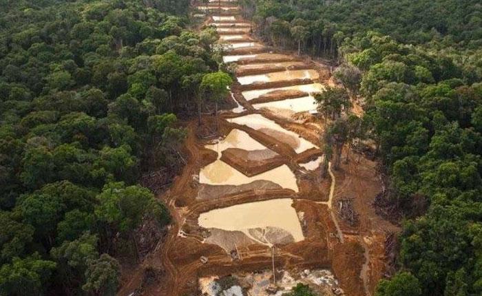 """No todo el oro del """"Arco Minero del Orinoco"""" irá a parar al Banco Central de Venezuela"""