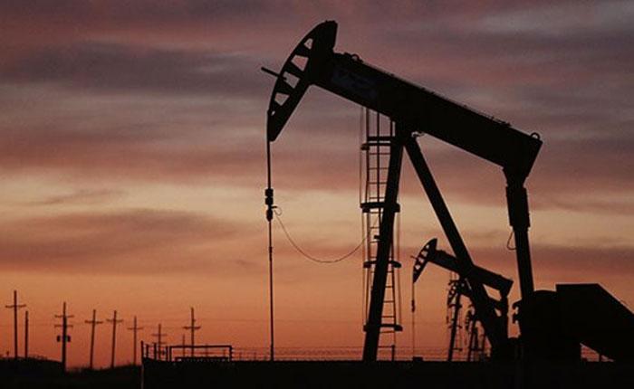 petrolerasman%cc%83ana