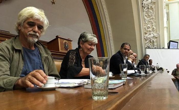 Asamblea Nacional condenó explotación del Arco Minero