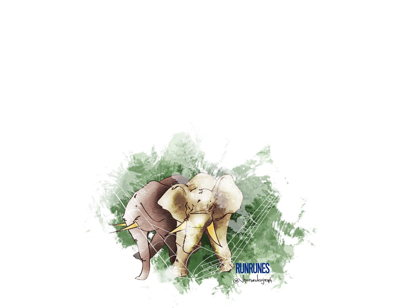 ilus elefantes2
