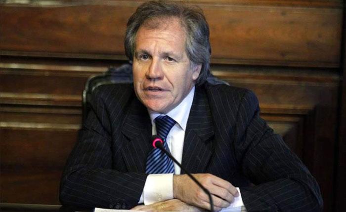 Luis Almagro apoyó el llamado de Luisa Ortega Díaz para retomar la libertad