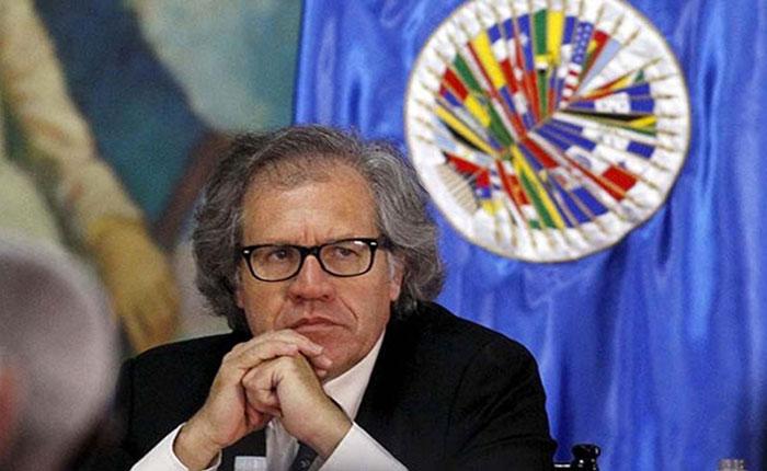 Almagro pidió suspender a Venezuela de la OEA si no realiza elecciones