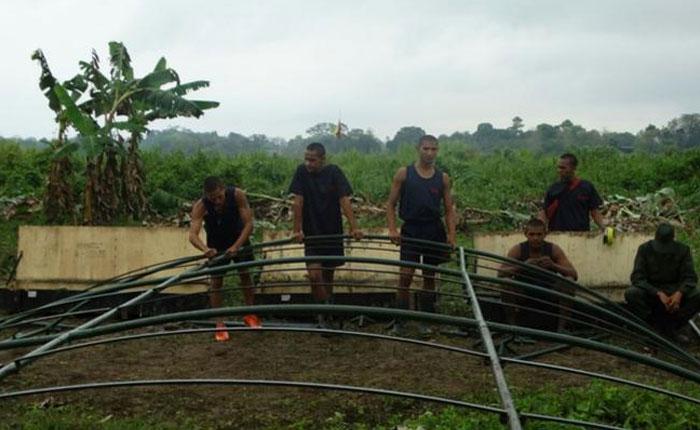 Dueño de finca invadida en Colombia: Ejército venezolano dañó cultivos para instalar carpas