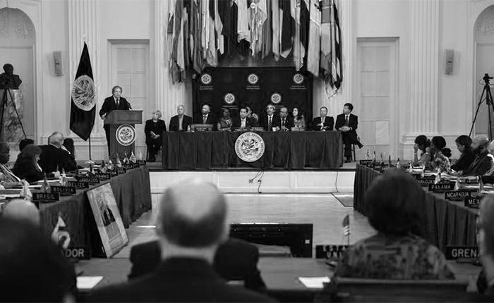 La OEA, entre el cinismo y la decencia, por Asdrúbal Aguiar