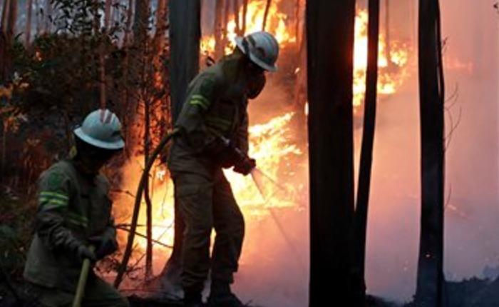 Resultado de imagen para Mueren 57 personas en fuegos forestales en centro de Portugal