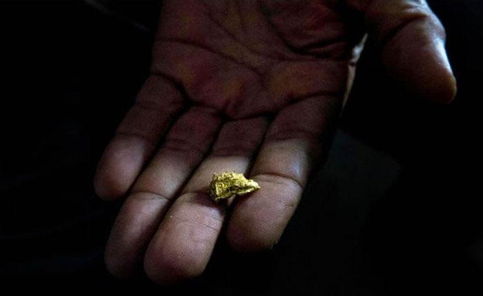 Detención de periodista extranjero refleja cerco mediático sobre arco minero