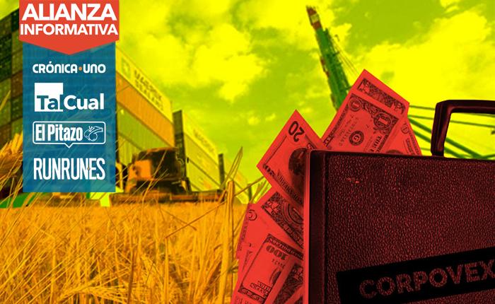 Empresa maletín recibió 35 millones de dólares de Corpovex para importar trigo