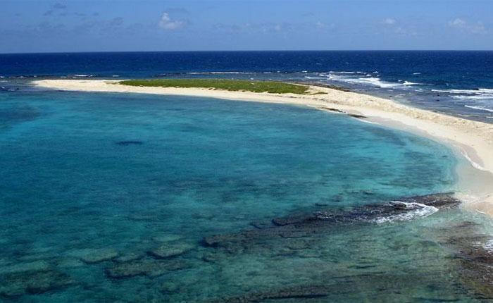Gobierno decretará Parque Nacional a Isla de Aves