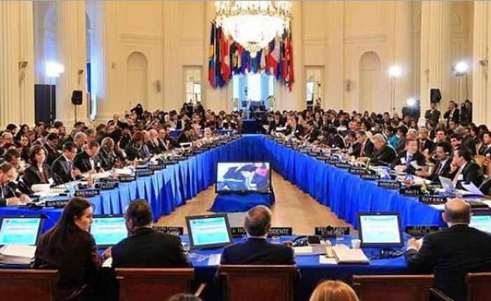 ¿Cómo se come la resolución de la OEA?, por Julio Castillo Sagarzazu