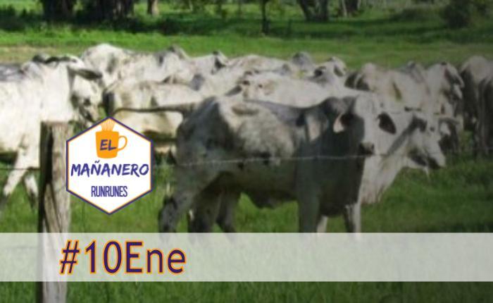 El Mañanero de hoy #10Ene: Las 8 noticias que debes saber