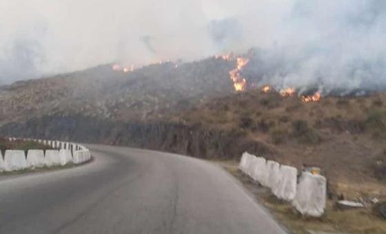 Sierranevada-incendio.png