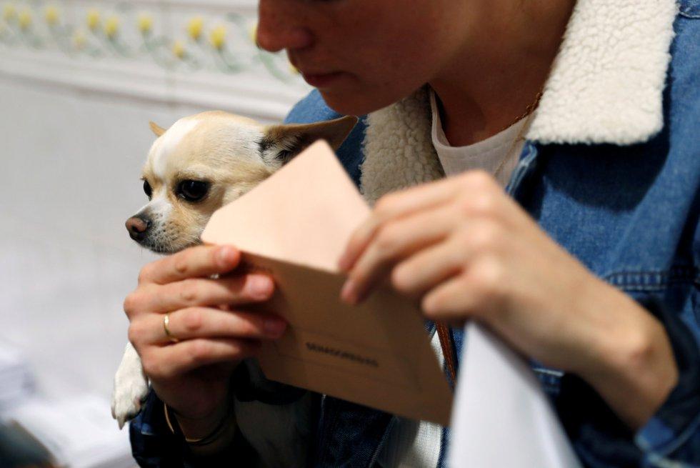 Con la segunda participación más alta de la historia, los españoles votan en las elecciones generales