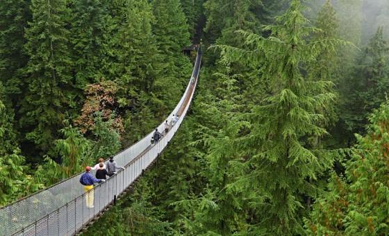 El espíritu verde de British Columbia, por Orlando Viera-Blanco