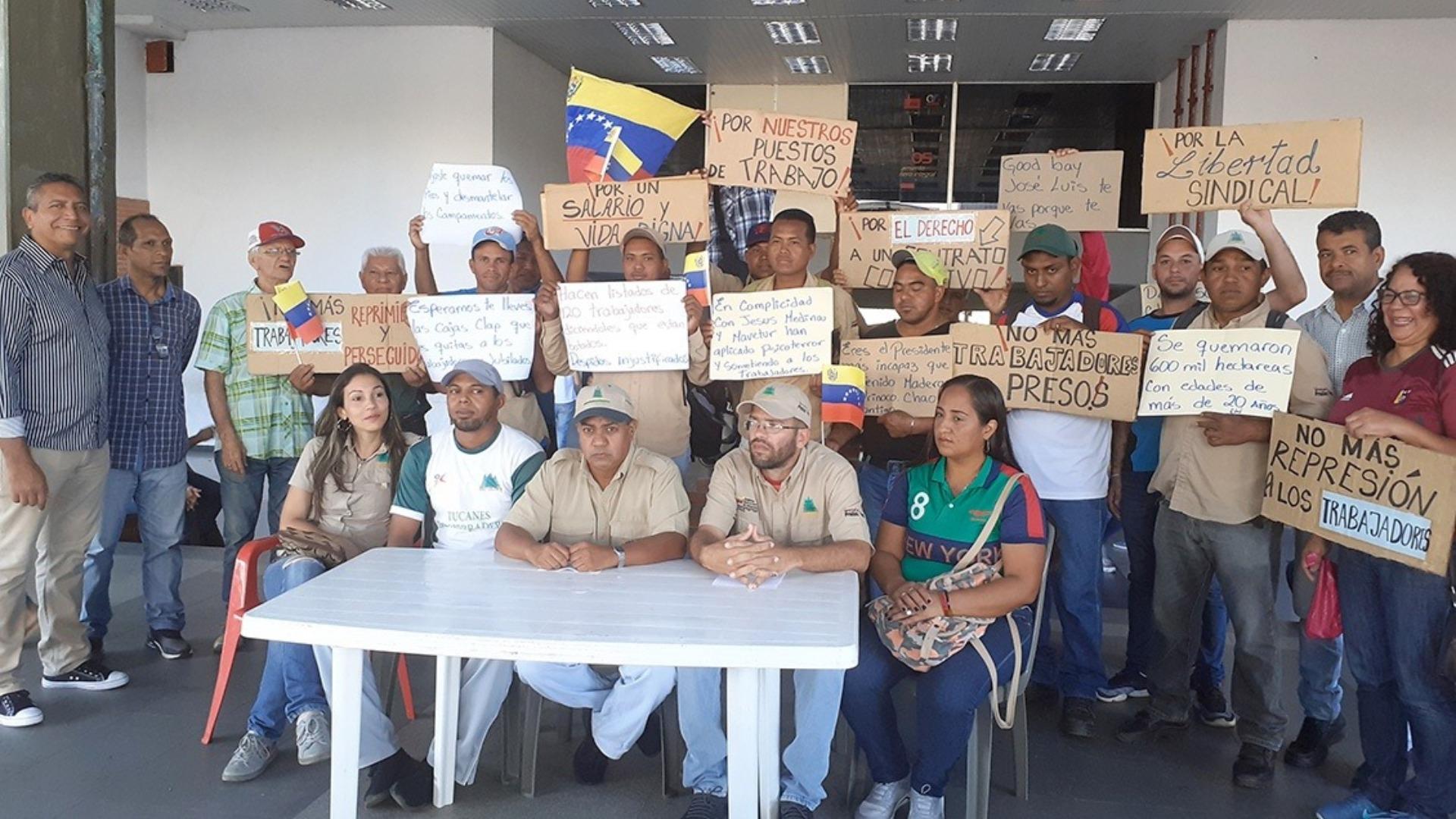 Denuncian despido de 120 trabajadores de Maderas del Orinoco