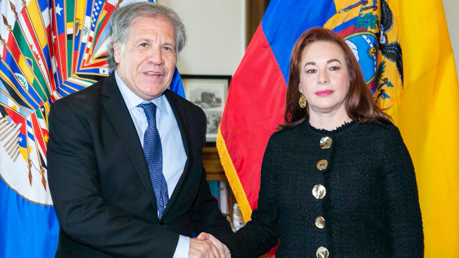 Informe Otálvora: Castrochavismo intenta desplazar a Almagro de la OEA