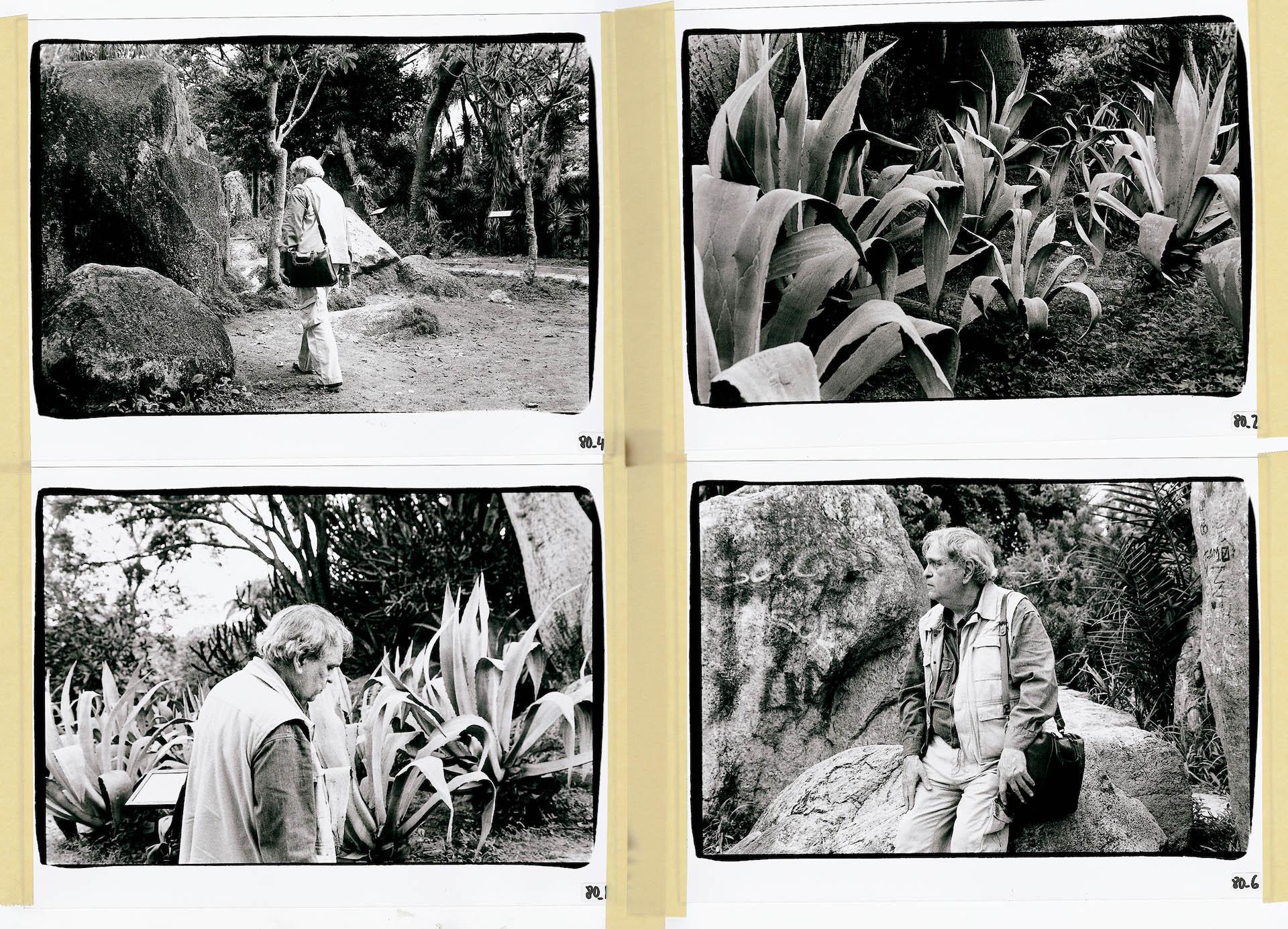 """""""Cuanto he tomado por victoria es sólo humo"""". Con estas fotos y estos poemas celebramos los 90 años de Rafael Cadenas"""
