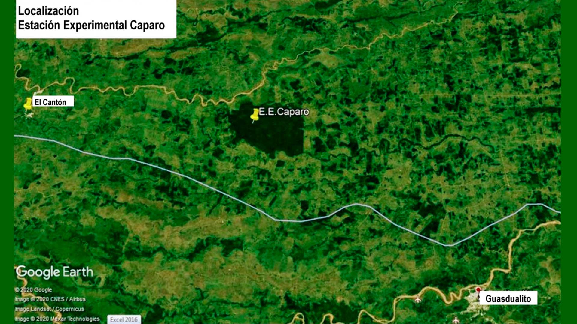 Selvas de Caparo